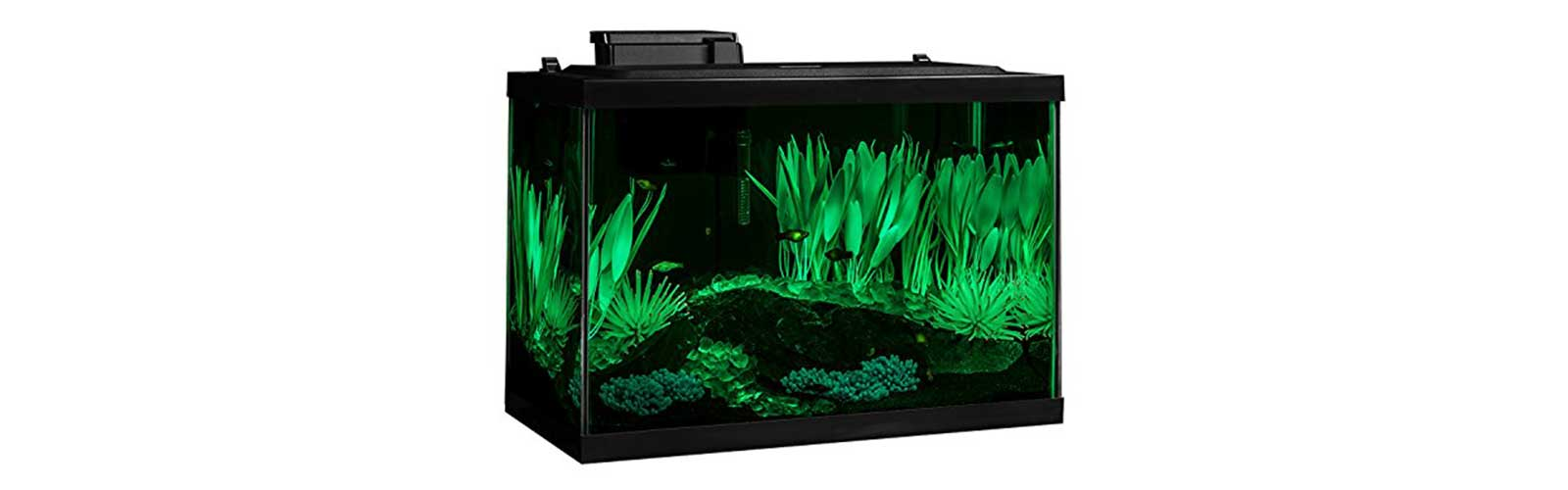 The best starter aquarium kits of 2018 beginner basics for 20 gallon fish tank kit